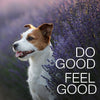 do good & feel good
