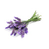 Lavender Wearable Aromatherapy