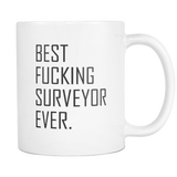 BEST FUCKING SURVEYOR EVER 11 & 15oz Mug