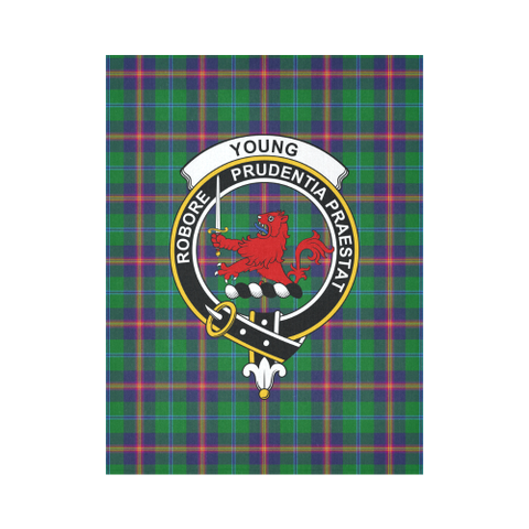Image of Young Modern Tartan Tapestry Clan Badge