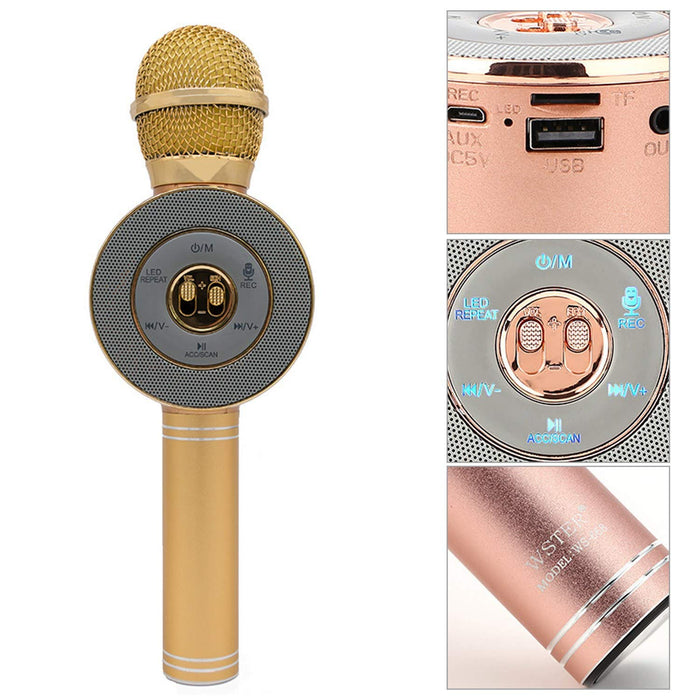 WS668 Wireless microphone bluetooth microphone