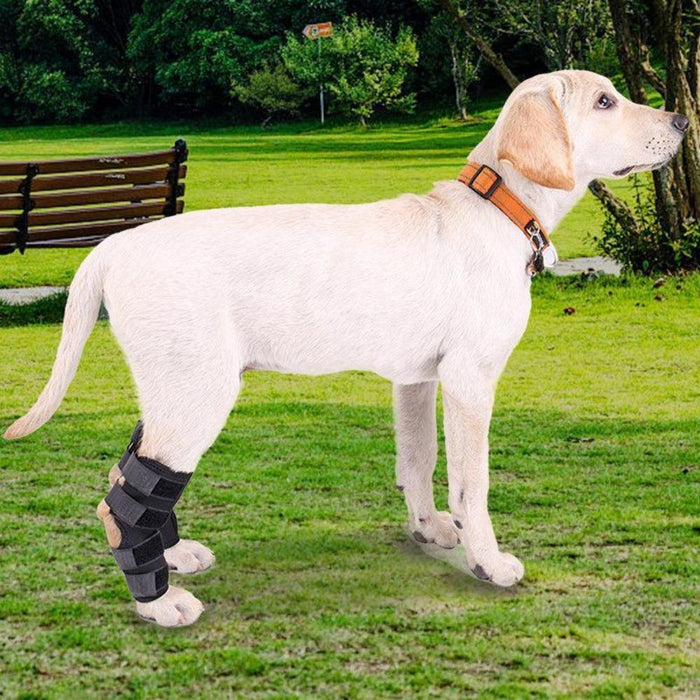 Hoison Canine Dog Hock Brace Rear Leg Joint Wrap Protects Wounds as They Heal