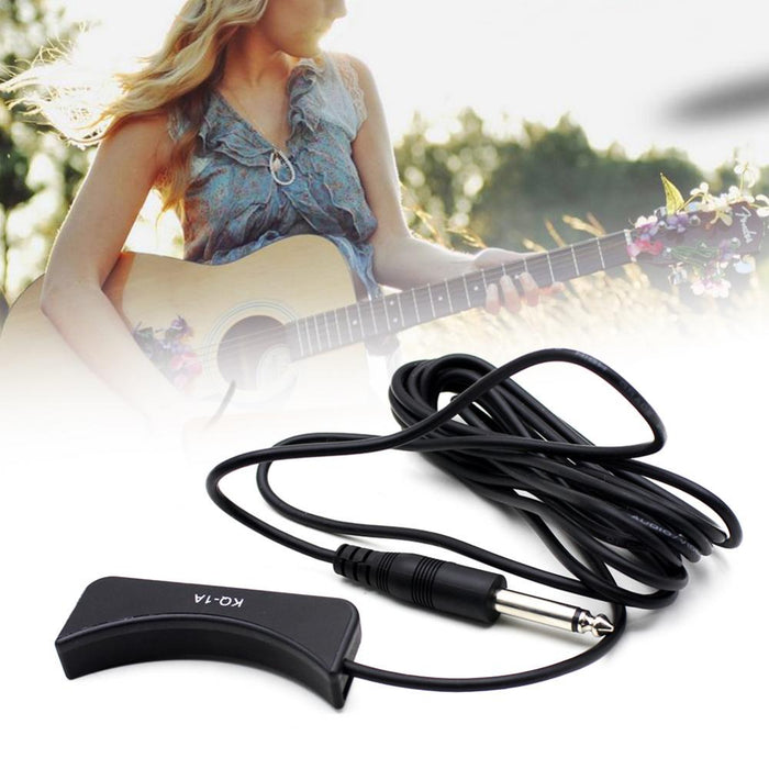 Guitar Pickup Transducer