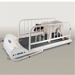 Dog Treadmills by Go Pet