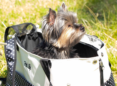 Fashion Tote Pet Carrier by Pet Life - Canine Cardio