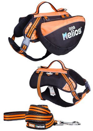 Freestyle Convertible Backpack, Harness, and Leash - Canine Cardio