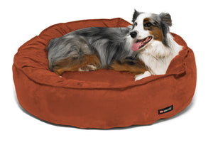 The Nest Pet Bed-Designed To Last Forever! - Canine Cardio