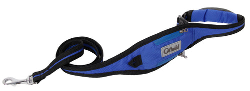 2 In 1 Dog Training Leash Belt - Canine Cardio