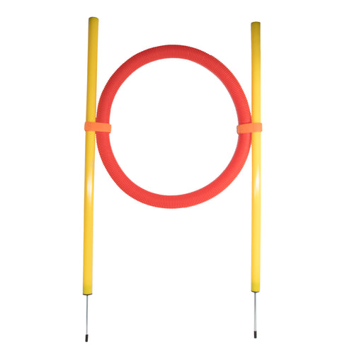 Agility Dog Training Hoop - Canine Cardio