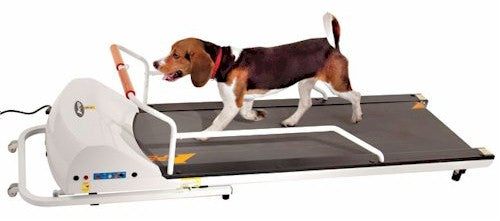 Pet Run PR720 Dog Treadmill by GoPet