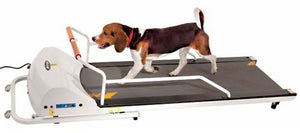 Pet Run PR720 Dog Treadmill by GoPet - Canine Cardio