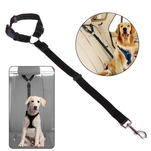 Pet Seat Belt - Canine Cardio