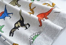 Dinosaurs everywhere Cotton Sweatshirt