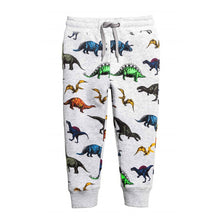 Kids Dino Sweats