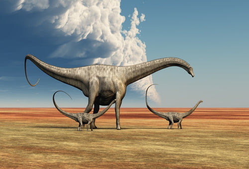 Wasteland Science Fiction Dinosaurs Photo Backgrounds