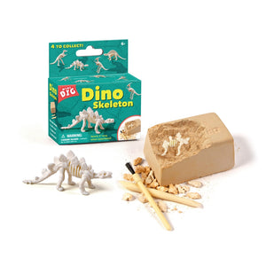 Small Dinosaur Random Dinosaur Fossil Dig Excavation Toy Kit