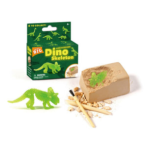 Glow In The Dark Small Dinosaur Fossil Dig Excavation Toy Kit