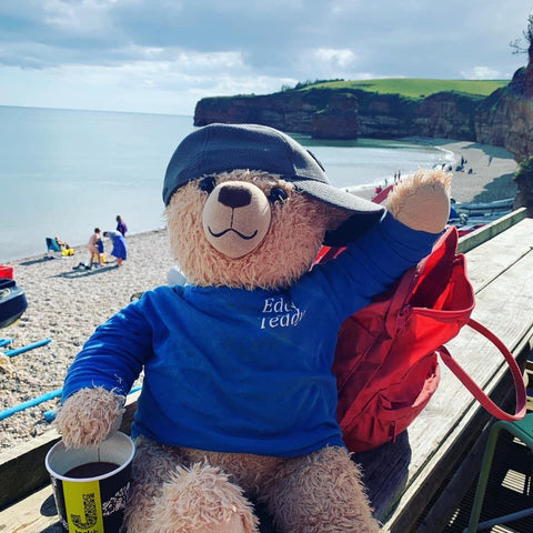 Eddy the Teddy by the seaside