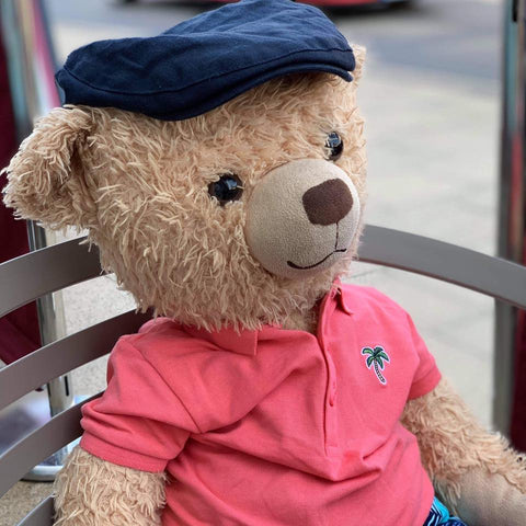 eddy the teddy with hat on