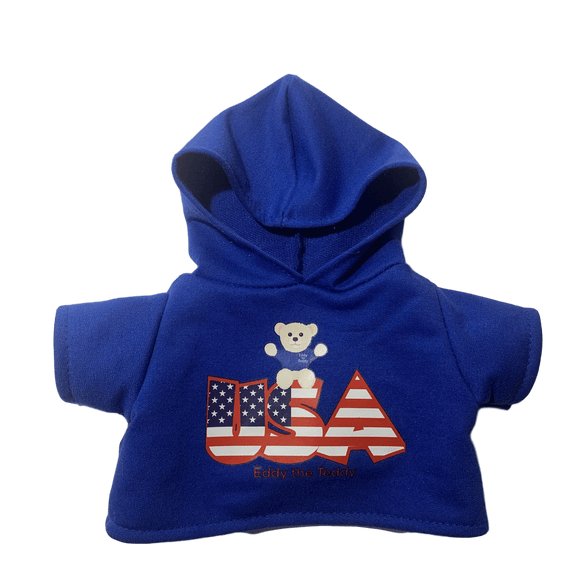 Blue usa teddy bear hoody