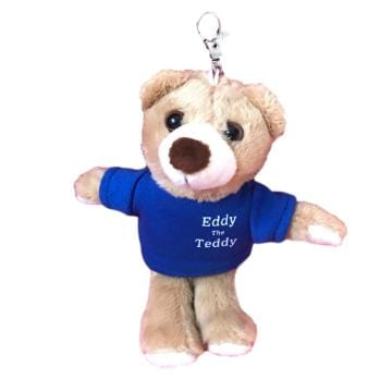 boy teddy bear keyring