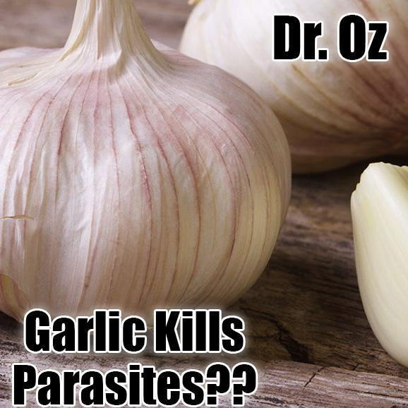 Dr. Oz Garlic Supplement for Parasites and Worms