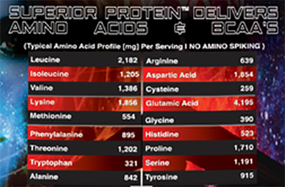 Superior Protein Amino Acid Profile