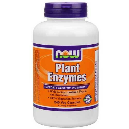 Now Foods Plant Enzymes 240 Vegetable Capsules Digestive Health / Probiotics Now Foods  (1059132473387)