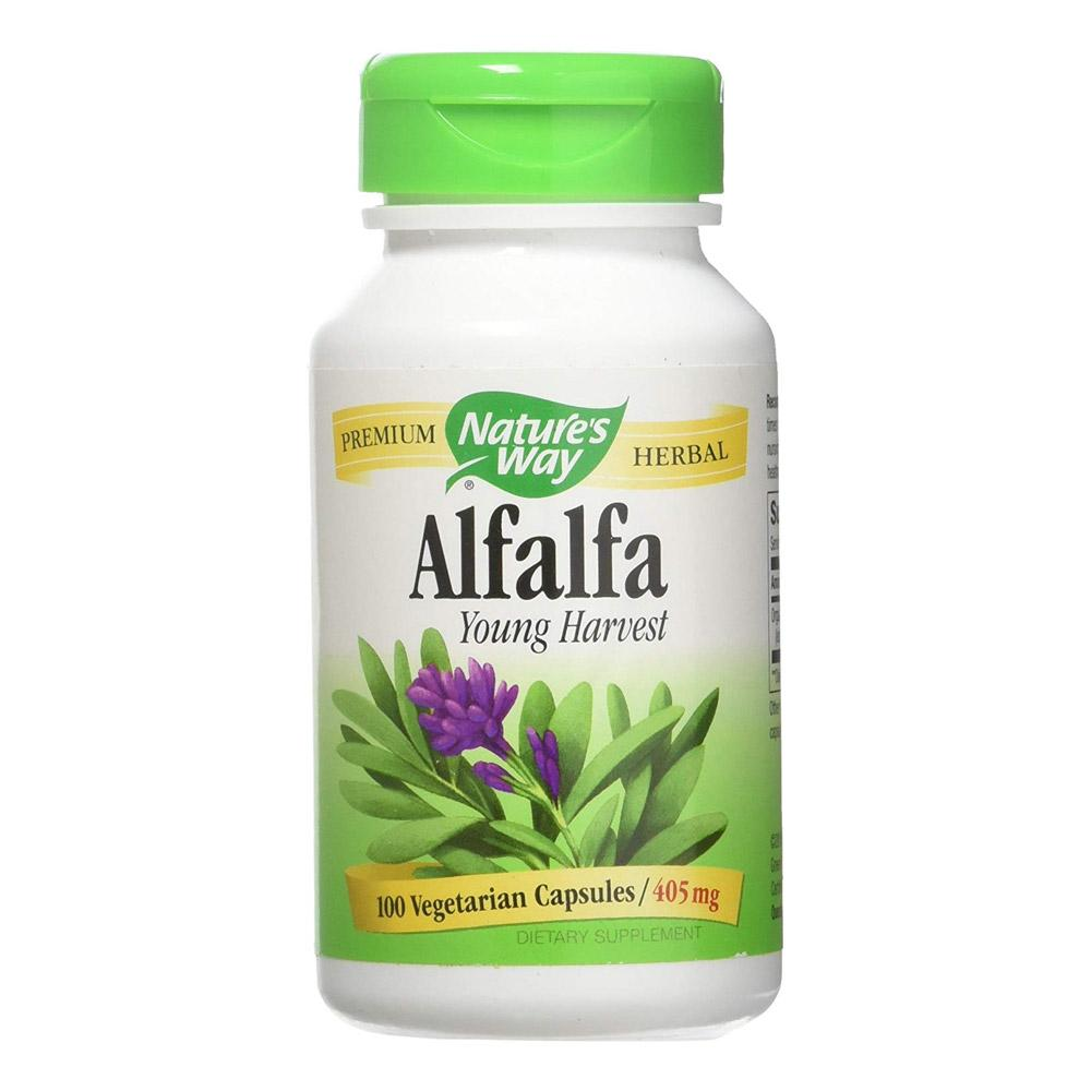 Nature's Way Alfalfa Leaves 405mg 100 Capsules Herbs Nature's Way