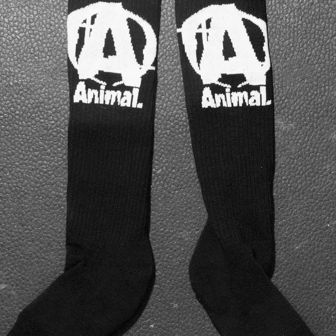 Animal Socks Fitness Accessories and Apparel Universal  (1528204689451)