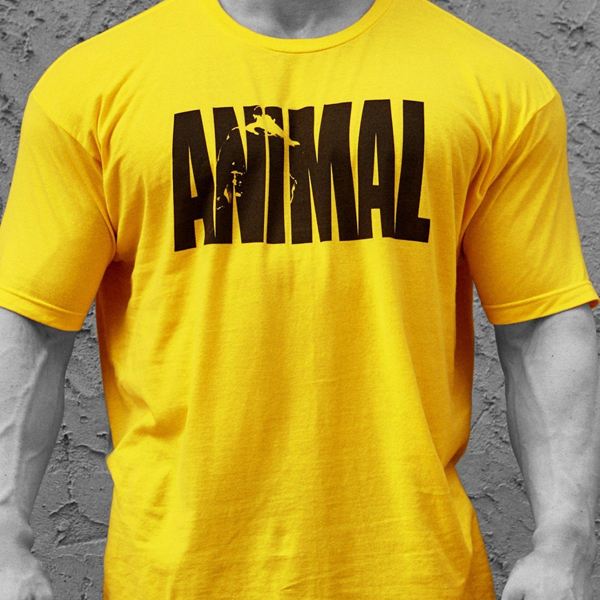 Universal Animal Iconic Tee Yellow X-Large Fitness Accessories and Apparel Universal  (1058211495979)