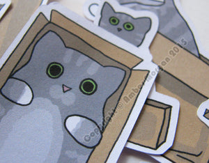 Box Cat Sticker Flakes