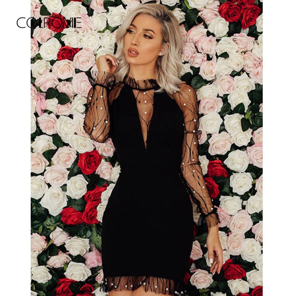 Black Pearl Beading Vine Mesh Panel Dress Women Ruffle Round Neck Long Sleeve Dress