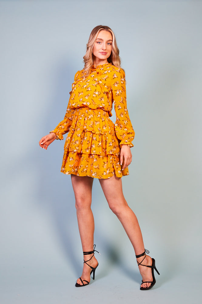 Rosanella Print Dress with Ruffle Skirt