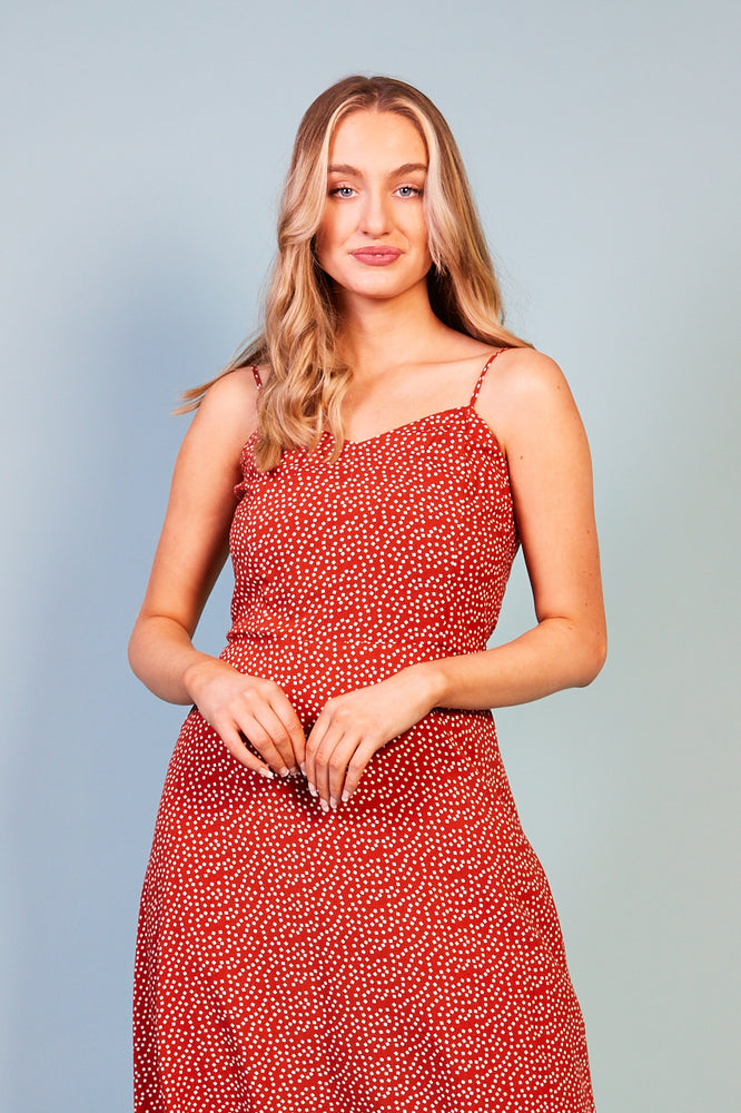 Maggia Print Dress