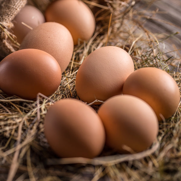 Eggs (Cage Free) - Large Brown