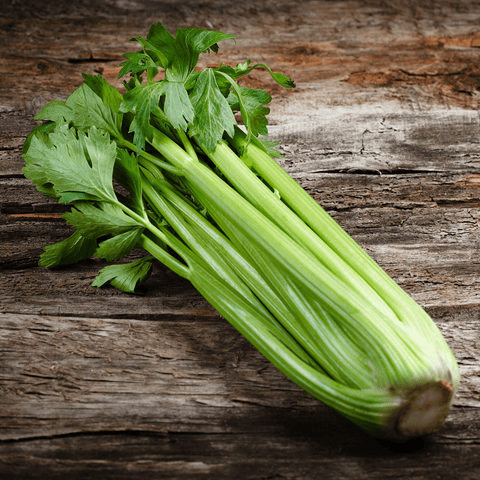Grocery Celery (bunch)