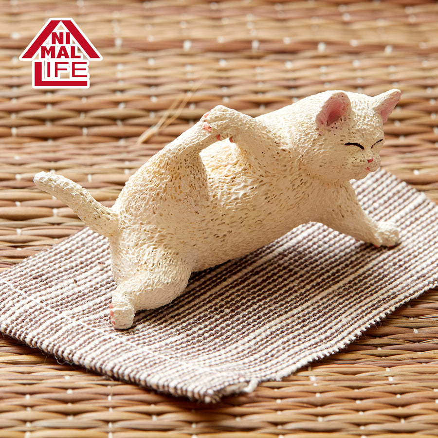 ANIMAL LIFE Baby Yoga Cat