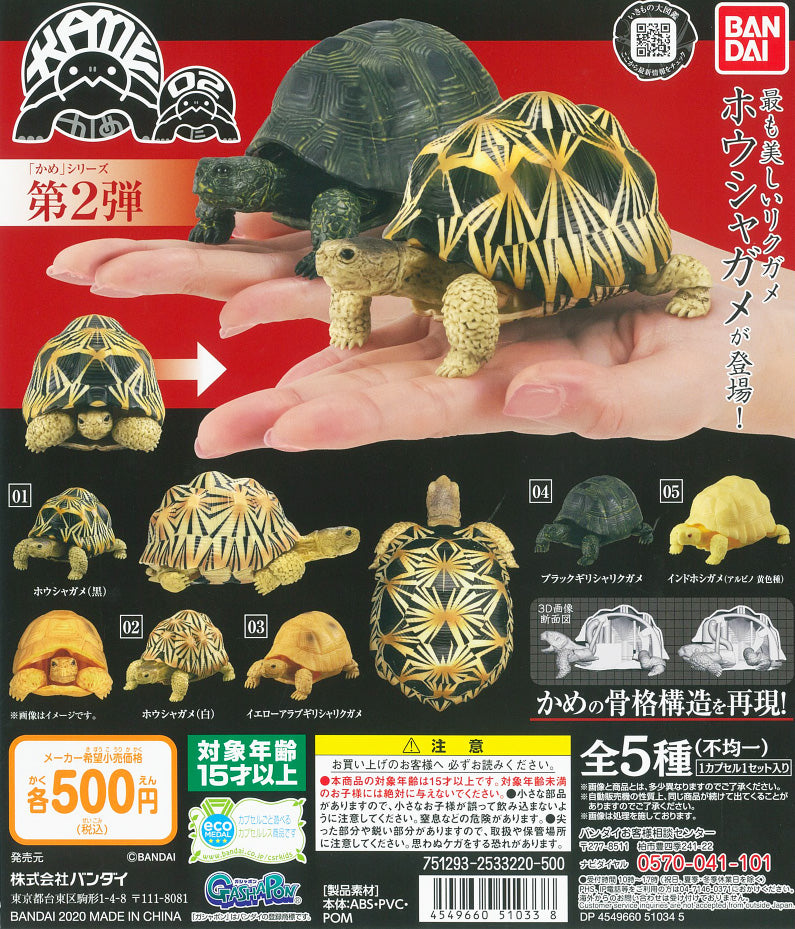 CP0927 - Turtle 02 - Complete Set