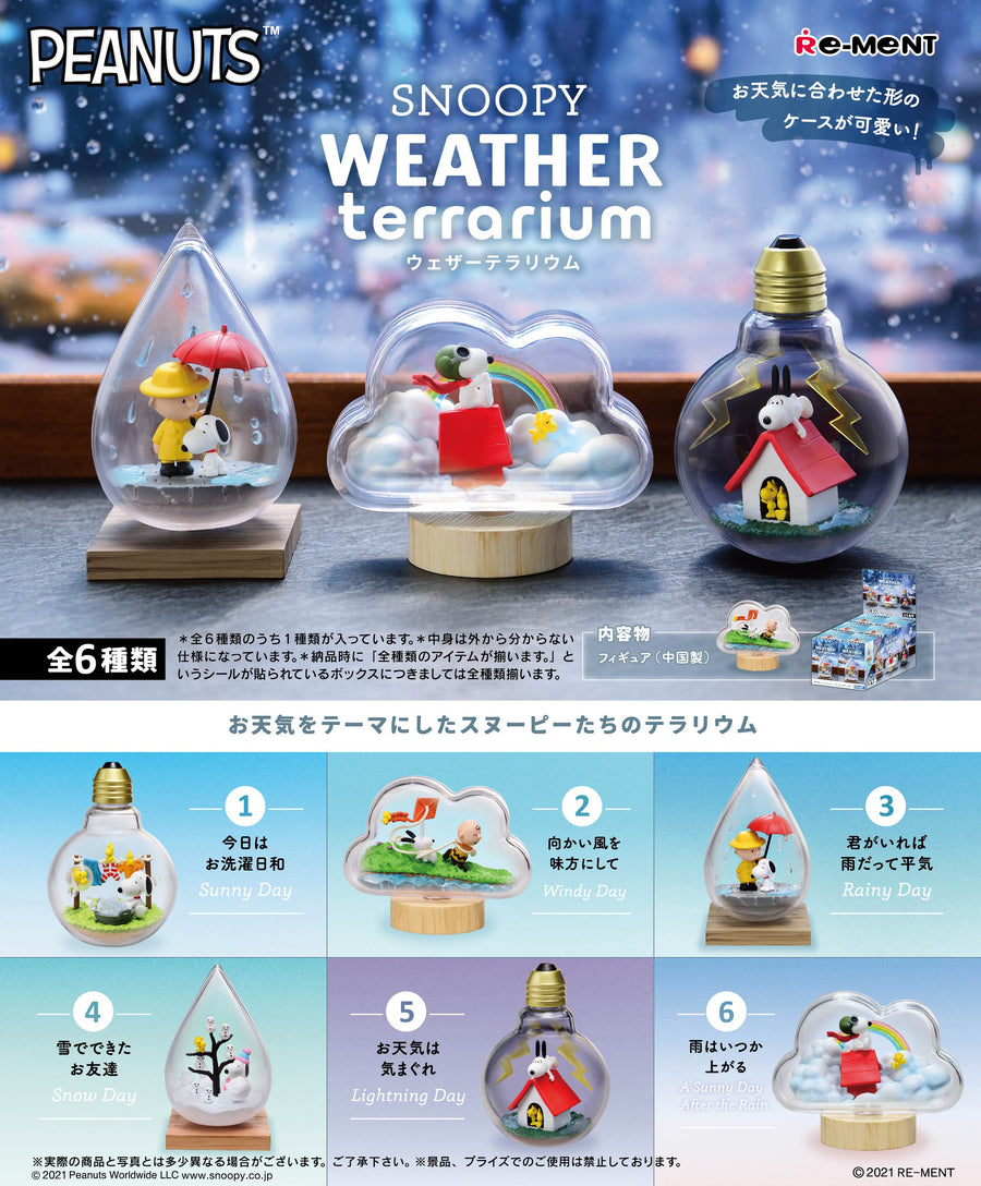 Peanuts SNOOPY WEATHER Terrarium