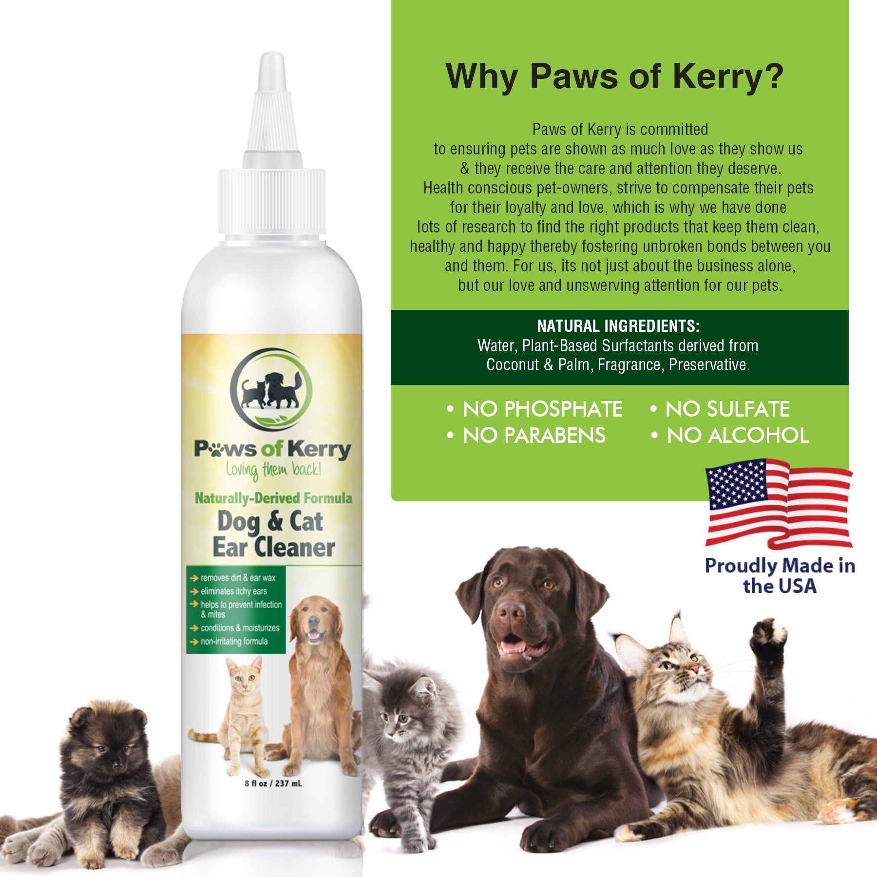 Dog & Cat Ear Infection Treatment – Paws of Kerry