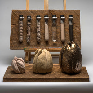 Alchemy Award winning sculpture showing ceramic process with mounted test tubes and sculpted forms on aged wood panels