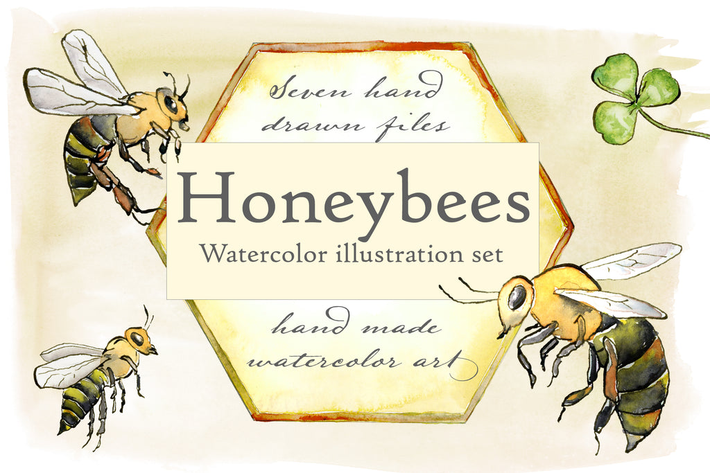Honeybees Watercolor Illustration Set - Hand Drawn Illustrations by Jamie Hansen - Jamie Hansen Art