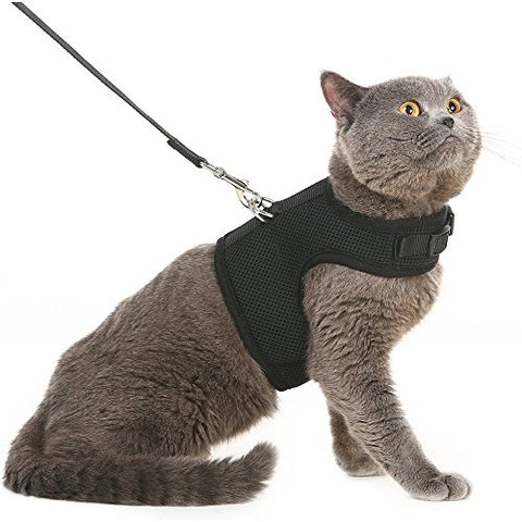 BINGPET Escape Proof Cat Harness and Leash - Adjustable Soft Mesh Holster Style - Best for Kitten Walking - BETTIKE.com