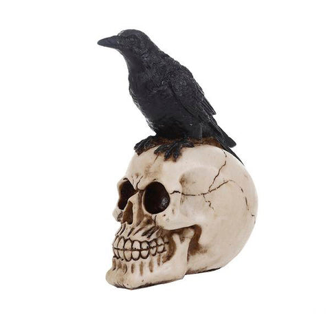 Human Skull Head With Crow Creative Skull Figurines Sculpture