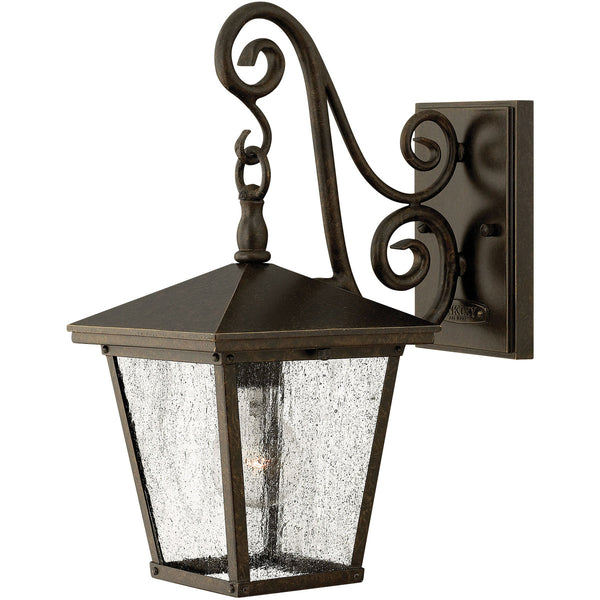 Hinkley Lighting 1430RB-LED Trellis 1 Light 15 inch Regency Bronze Outdoor Wall in LED Clear Seedy Glass