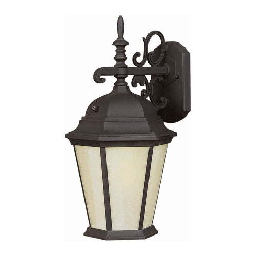 Forte Lighting Signature 1 Light 8 inch Black Outdoor Lantern