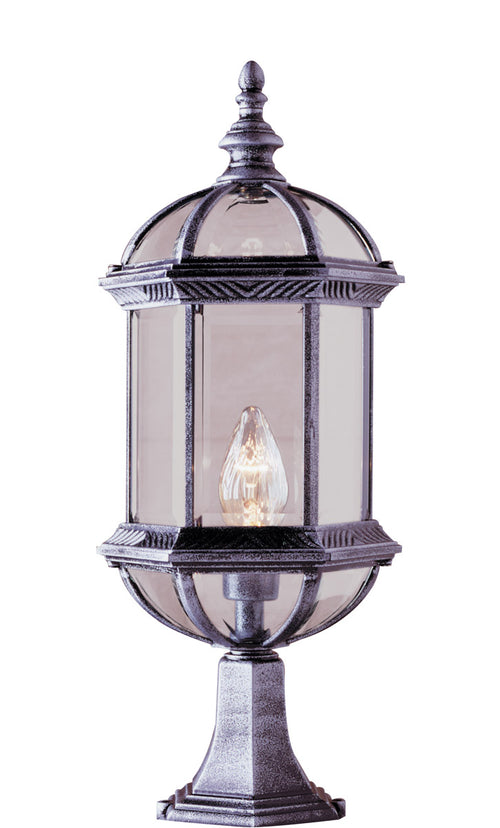 Trans Globe Lighting 4182-SWI Botanica 1 Light 21 inch Swedish Iron Post Lantern