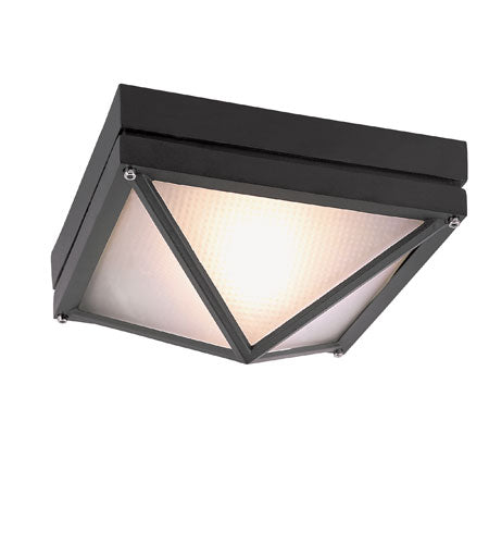 Z-Lite Beacon 2 Light 10 inch Black Outdoor Chain Mount Ceiling Fixture