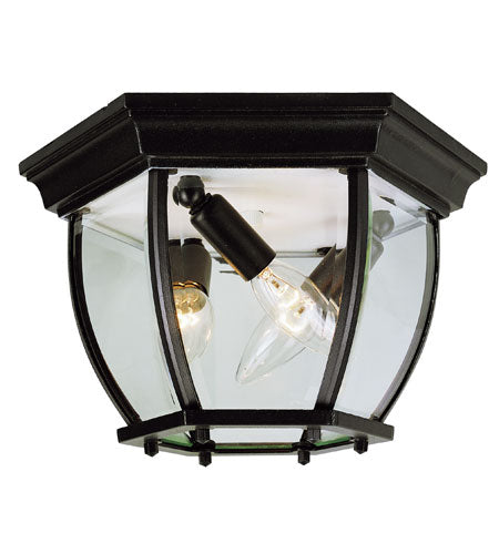 Z-Lite Jordan 1 Light 10 inch Black Outdoor Chain Mount Ceiling Fixture